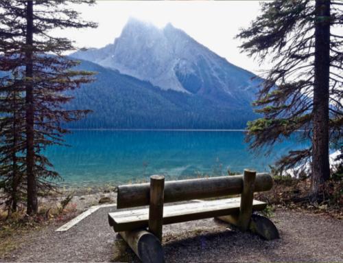 Cinco consejos para evitar lumbalgias en la posición sentada
